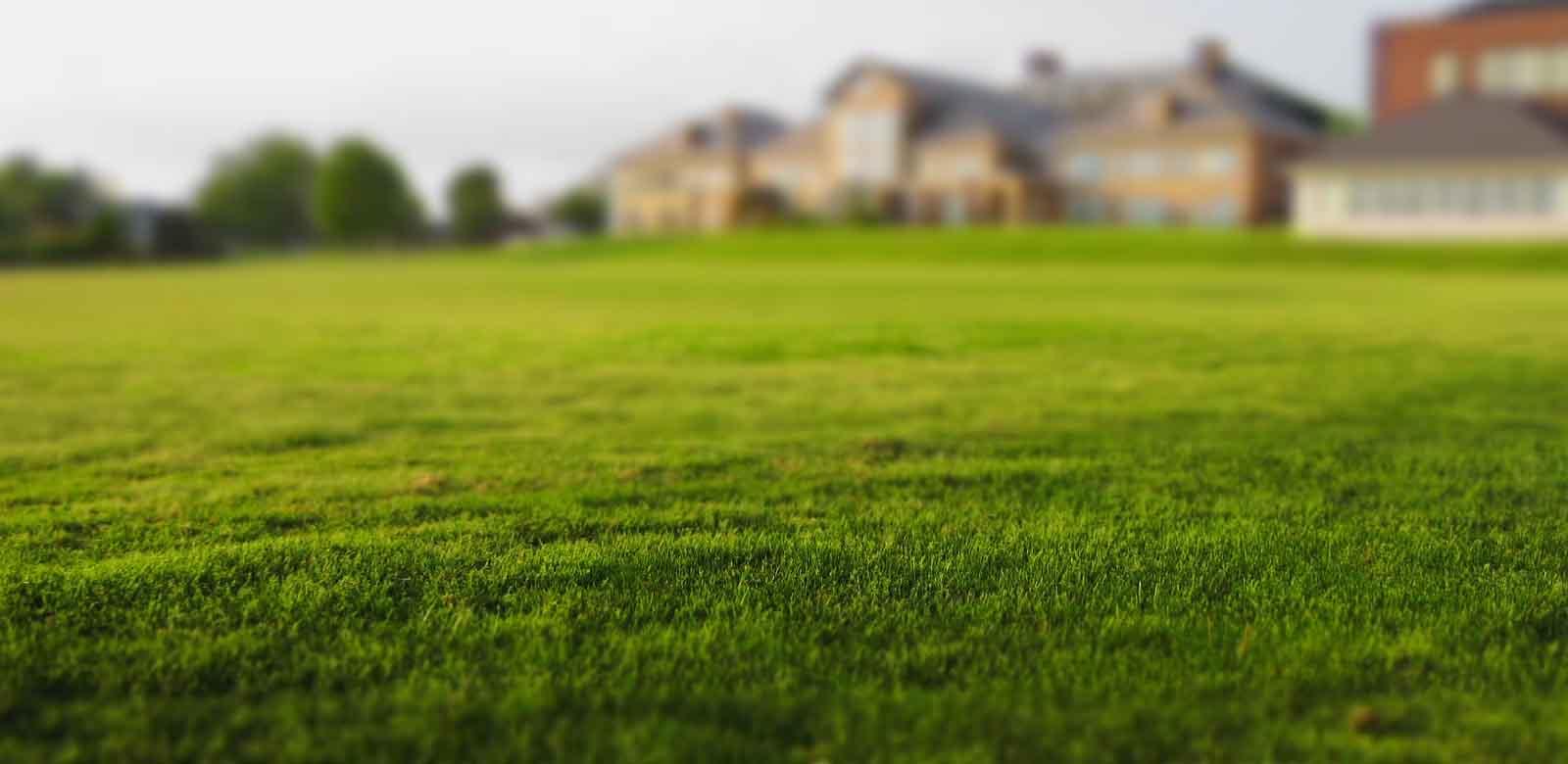 LUBIG Immobilien - Startbild
